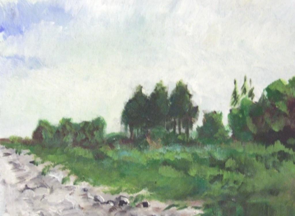 landskab 0022